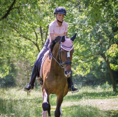 16 willekeurige feiten over paarden die handig zijn om te weten